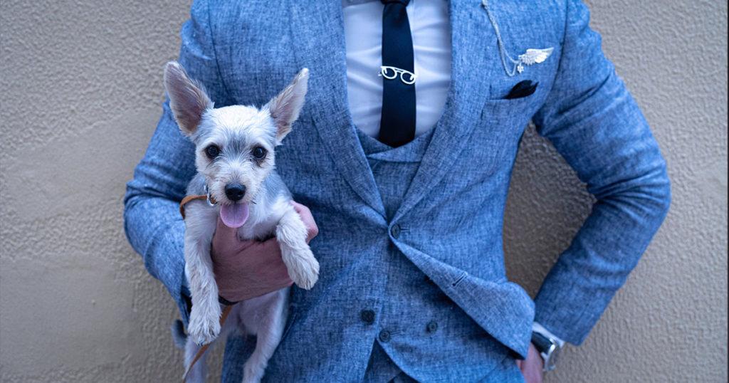 doit on porter uen cravate bleue au bureau