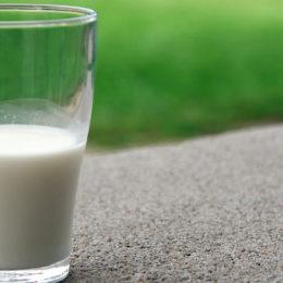 a quoi sert le calcium